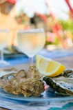Fresh oysters and a glass of wine. Fresh oysters and a glass of white wine Royalty Free Stock Photography