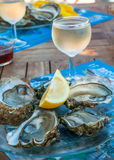 Fresh oysters and a glass of wine Stock Image