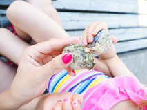 Fresh oysters held by two females Stock Photography