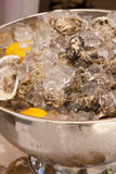 Fresh Oysters in ice. Fresh Oysters on ice with lemon in a silver bowl Royalty Free Stock Photography