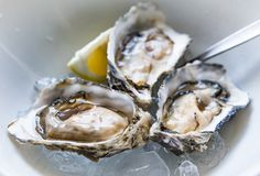 Fresh oysters on ice in a gourmet restaurant stock photo
