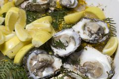 Fresh oysters on ice with lemon Royalty Free Stock Photos