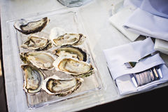 Fresh oysters on ice at an outdoor cafe. Royalty Free Stock Photo