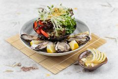 Fresh oysters and Japanese salad served with Sliced and lemon sauce on white stone bowl on makisu meal mat.  Royalty Free Stock Images