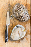 Fresh oysters and knife on wooden board Stock Photos