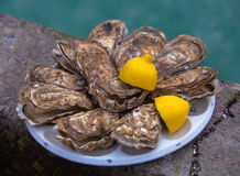 Fresh oysters with lemon at Cancale, France Stock Image
