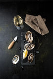 Fresh oysters with lemon and a glass of wine. On a dark background Royalty Free Stock Photo