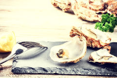 Fresh oysters with lemon on stone plate. Food background Royalty Free Stock Images