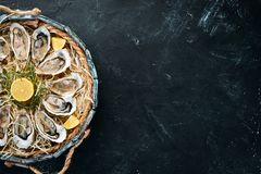 Fresh oysters with lemon in Wooden Box. On a black stone background. Top view. Free copy space stock photos