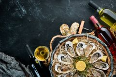Fresh oysters with lemon in Wooden Box. On a black stone background. Top view. Free copy space stock photography