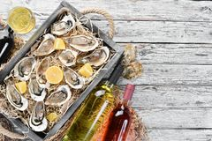 Fresh oysters with lemon in Wooden Box. On a white wooden background. Top view. Free copy space stock photo