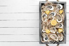 Fresh oysters with lemon in Wooden Box. On a white wooden background. Top view. Free copy space stock photography