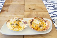 Delicious oysters with melted cheese on top stock photo
