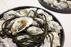 Fresh oysters on a nice decorated plate. Pile of fresh small size oysters putting on a plate in a restaurant Royalty Free Stock Photos