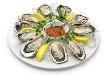 Fresh oysters plate. Isolated on white background Stock Photography