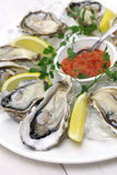 Fresh oysters plate Royalty Free Stock Photography