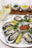 Fresh oysters plate Royalty Free Stock Photos