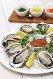 Fresh oysters plate Stock Images