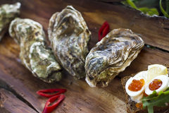 Fresh oysters with red caviar and chili pepper Royalty Free Stock Photography