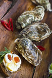 Fresh oysters with red caviar and chili pepper Stock Image