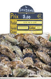 Fresh oysters for sale with price label Stock Images