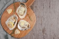 Fresh Oysters in shell with lemon on cutting board on a dark bac. Kground Stock Image