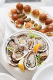 Fresh oysters and snacks Royalty Free Stock Photo