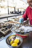 Fresh oysters, streetfood. Stock Images