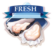 Fresh oysters with text Stock Photography