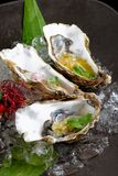 Fresh Oysters with three sauces Stock Photos