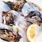 Fresh oysters in a white plate with ice and lemon stock photo