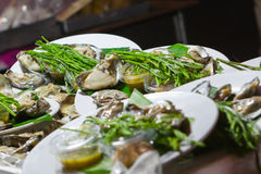 Fresh oysters in a white plate. At night market,Thailand Stock Photo