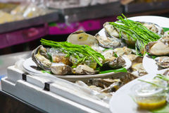Fresh oysters in a white plate. At night market,Thailand Royalty Free Stock Photo