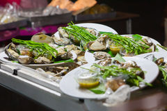Fresh oysters in a white plate. At night market,Thailand Royalty Free Stock Photography