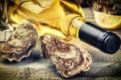 Fresh oysters with white wine bottle. Food background Stock Photography