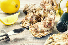 Fresh oysters with white wine bottle. Food background Royalty Free Stock Image