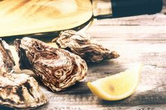 Fresh oysters with white wine bottle. Food background. With copyspace Royalty Free Stock Photo