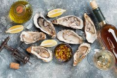 Fresh oysters and white wine. On stone table. Top view Stock Images