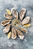 Fresh oysters and white wine. On stone table. Top view Stock Photography