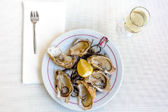 Fresh oysters with white wine Royalty Free Stock Photo