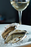 Fresh oysters with white wine Royalty Free Stock Images
