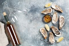 Fresh oysters and white wine. On stone table. Top view with space for your text Stock Images
