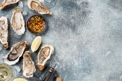 Fresh oysters and white wine. On stone table. Top view with space for your text Royalty Free Stock Photo