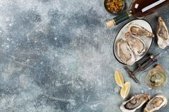 Fresh oysters and white wine. On stone table. Top view with space for your text Stock Photo