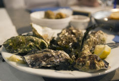 Fresh oysters and wine. French cuisine. Stock Photo