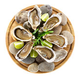 Fresh oysters on wooden board, with clipping path Stock Image