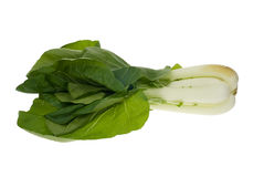Fresh pak Choy Royalty Free Stock Image
