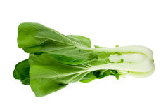 Fresh pak Choy Stock Images