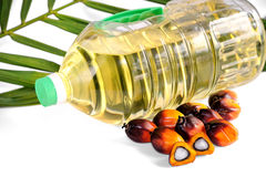Fresh Palm Oil seeds and cooking oil with leaf Stock Photos