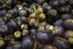 Fresh palmyra palm or toddy palm fruit. Royalty Free Stock Photography